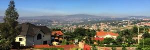 Swarming with Ni Nyampinga in Rwanda