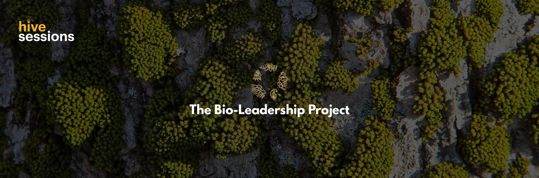 hivesessions-bioleadership