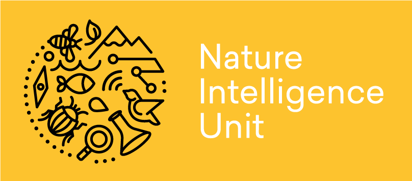 NIU-Logo-Primary-Box (1)